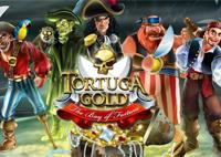 Играть в игровой автомат Суровые Пираты бесплатно